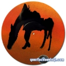 sillo_horse_2010_yourfaceonvinyl_480px